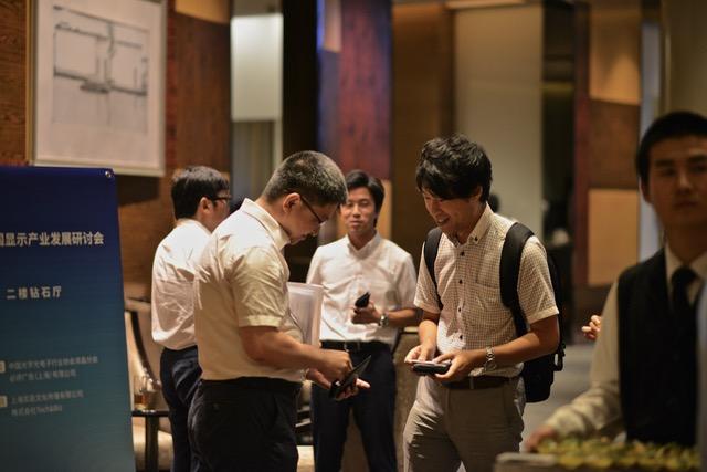 2017中国显示产业发展研讨会
